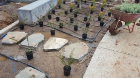 Rock work perfectly flush with concrete.