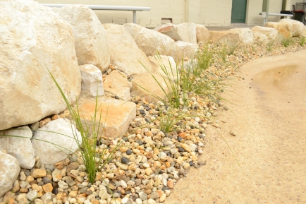 Rock Edging with gravel mulch and light planting.